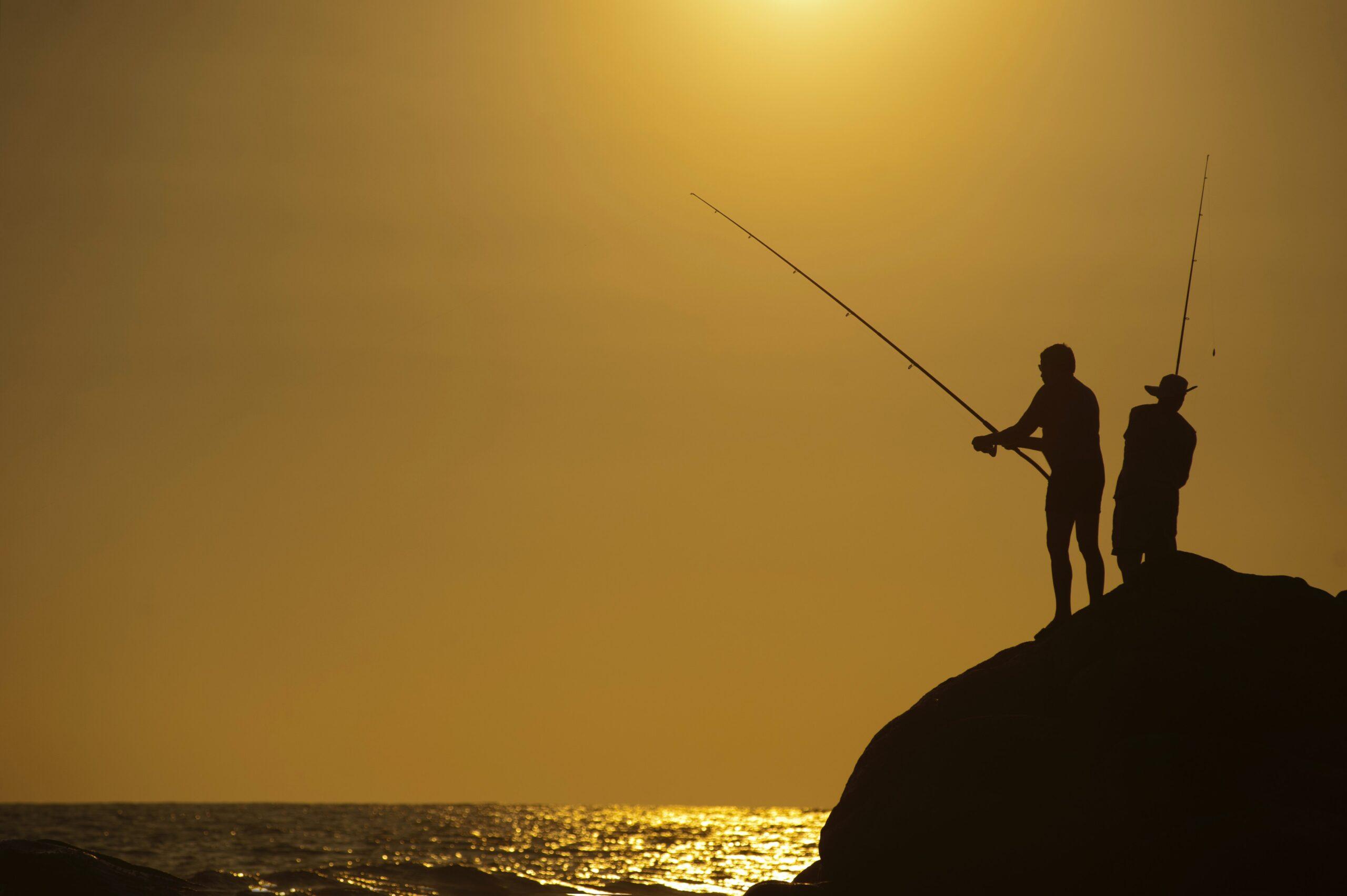 zanęty na ryby dlaczego warto